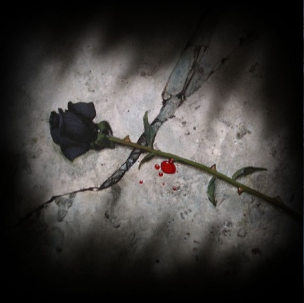 blood-rose-fall-ground.jpg