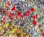 cavalier-rouge.jpg
